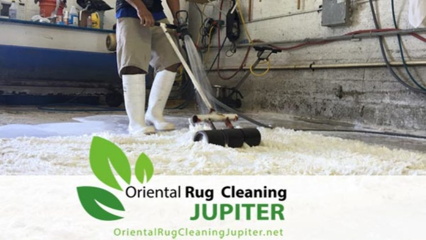 Pet Urine Smell Jupiter | Oriental Rug Cleaning & Cleaners